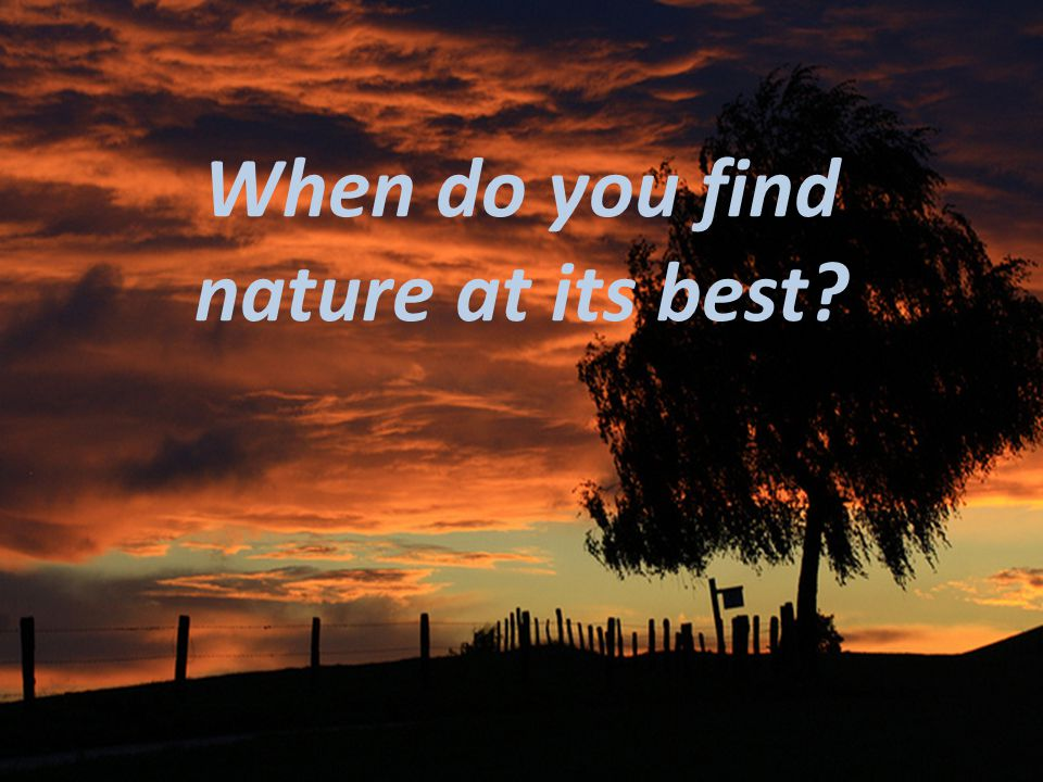 When do you find nature at its best