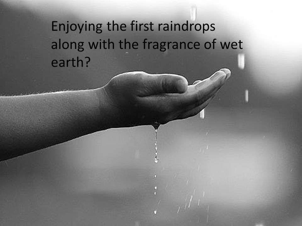 Enjoying the first raindrops along with the fragrance of wet earth