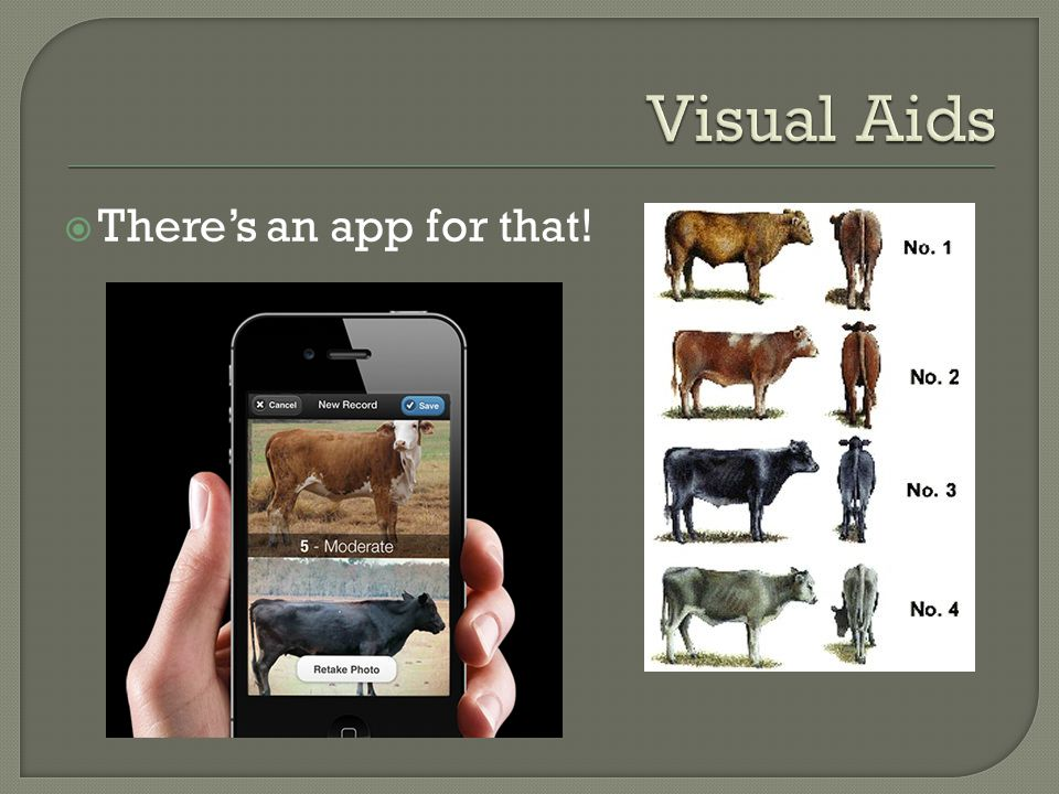 Visual Aids There's an app for that!