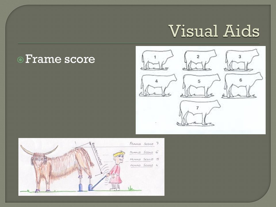 Visual Aids Frame score