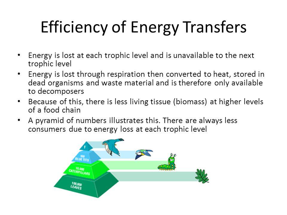 Efficiency of Energy Transfers