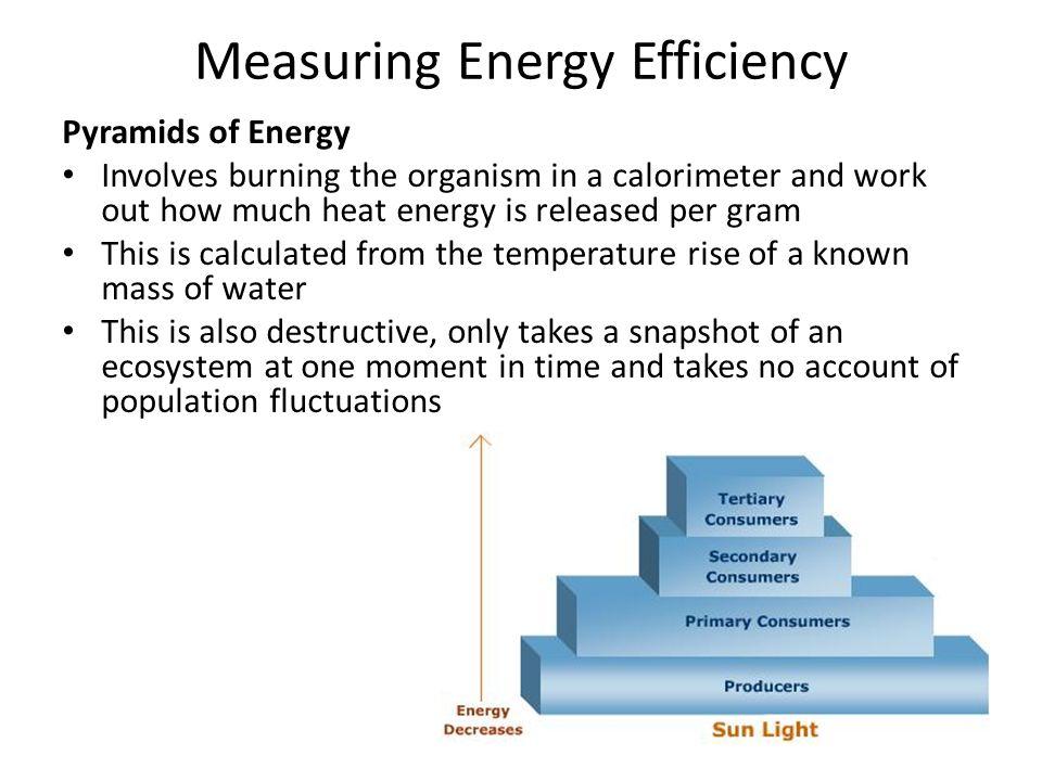 Measuring Energy Efficiency