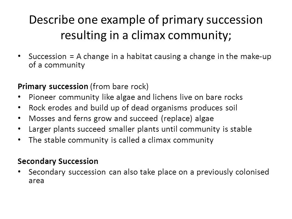 Describe one example of primary succession resulting in a climax community;