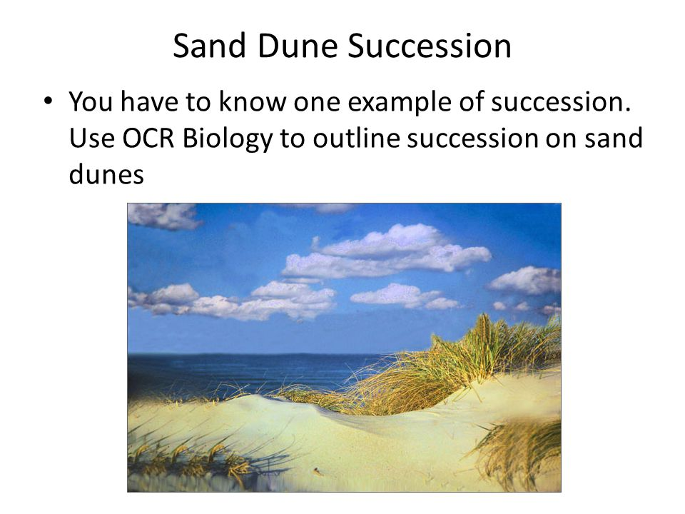 Sand Dune Succession You have to know one example of succession.