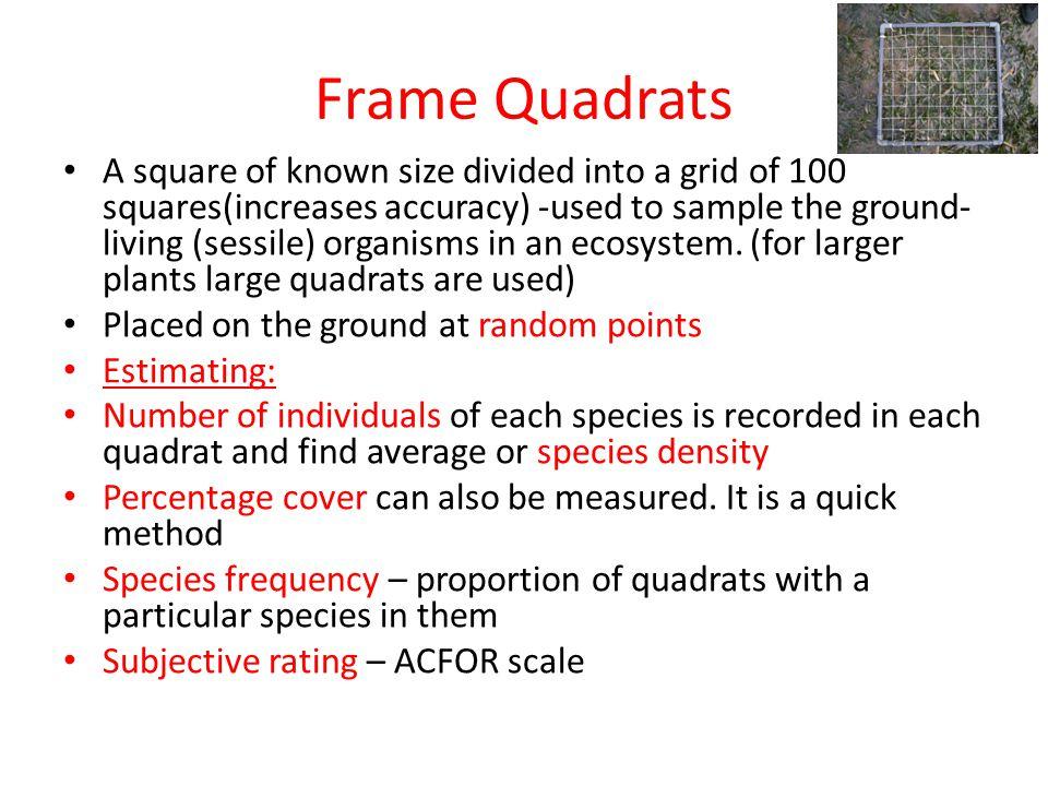 Frame Quadrats