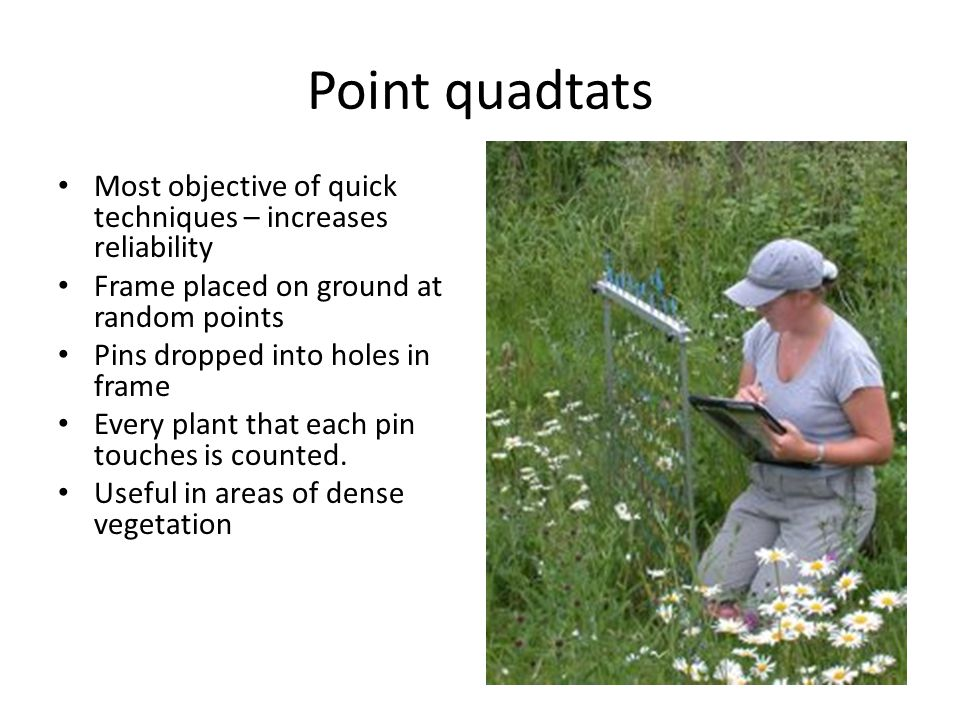 Point quadtats Most objective of quick techniques – increases reliability. Frame placed on ground at random points.