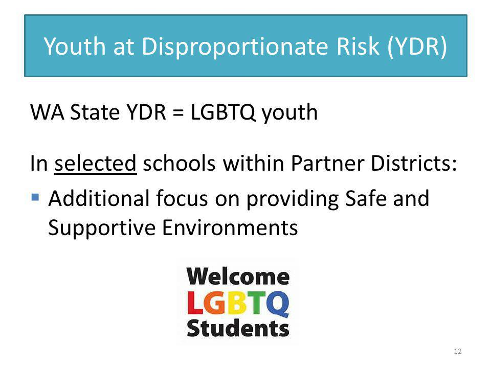 Youth at Disproportionate Risk (YDR)