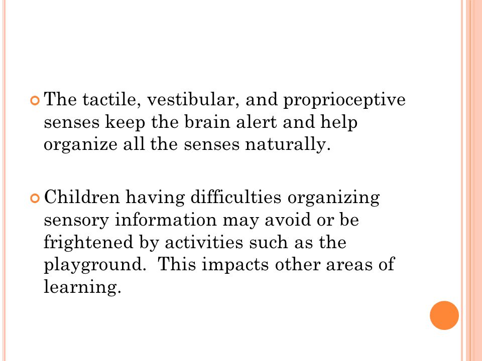 The tactile, vestibular, and proprioceptive senses keep the brain alert and help organize all the senses naturally.