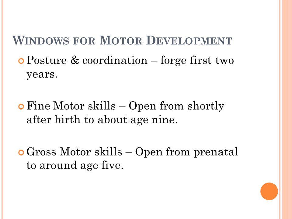Windows for Motor Development