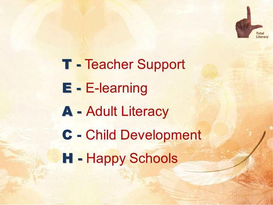 T - Teacher Support E - E-learning A - Adult Literacy C - Child Development H - Happy Schools