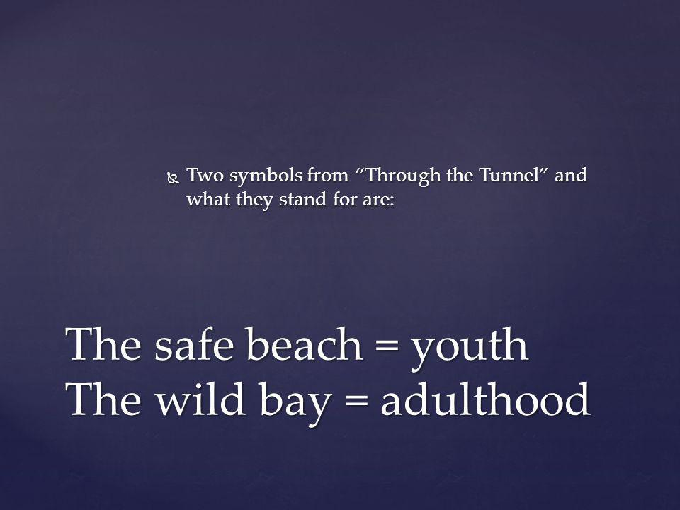 The safe beach = youth The wild bay = adulthood