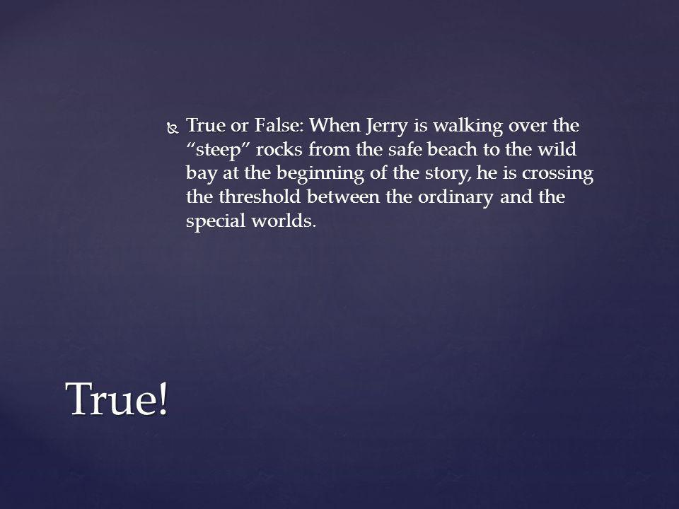 True or False: When Jerry is walking over the steep rocks from the safe beach to the wild bay at the beginning of the story, he is crossing the threshold between the ordinary and the special worlds.
