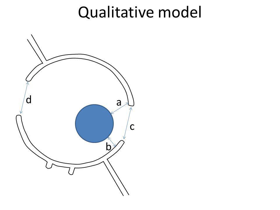 Qualitative model d a c b