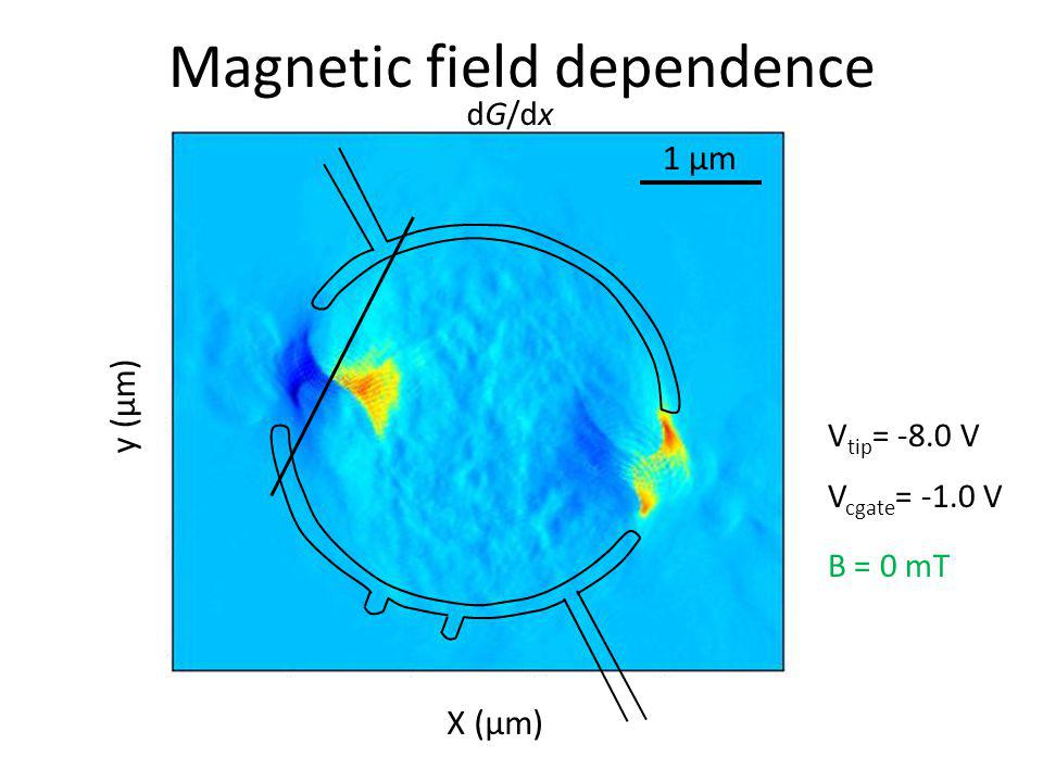 Magnetic field dependence