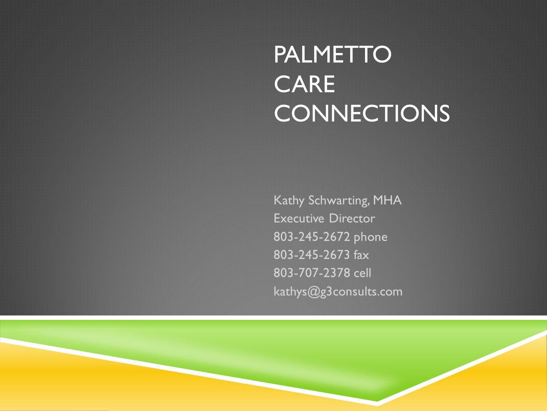 Palmetto care connections