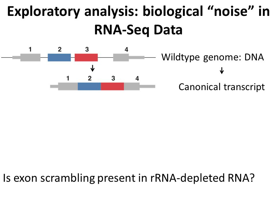 Exploratory analysis: biological noise in RNA-Seq Data