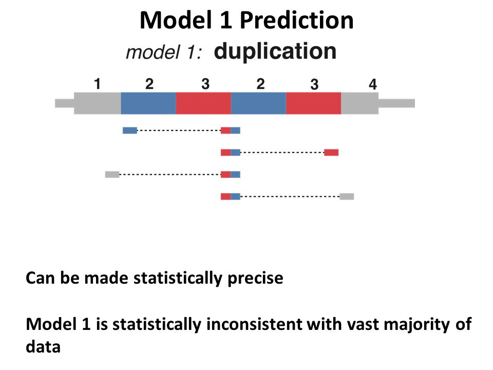 Model 1 Prediction Can be made statistically precise