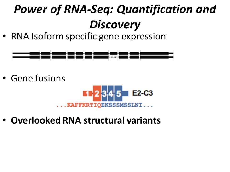Power of RNA-Seq: Quantification and Discovery