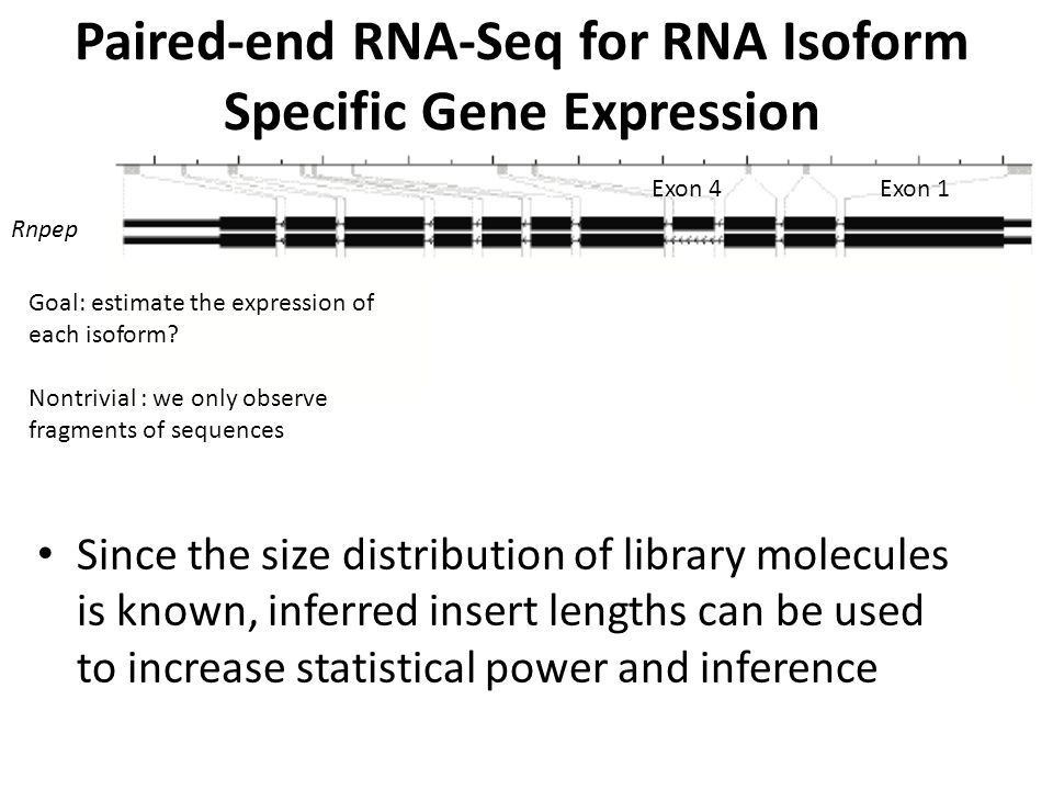 Paired-end RNA-Seq for RNA Isoform Specific Gene Expression
