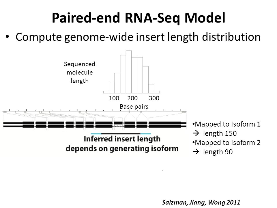Paired-end RNA-Seq Model