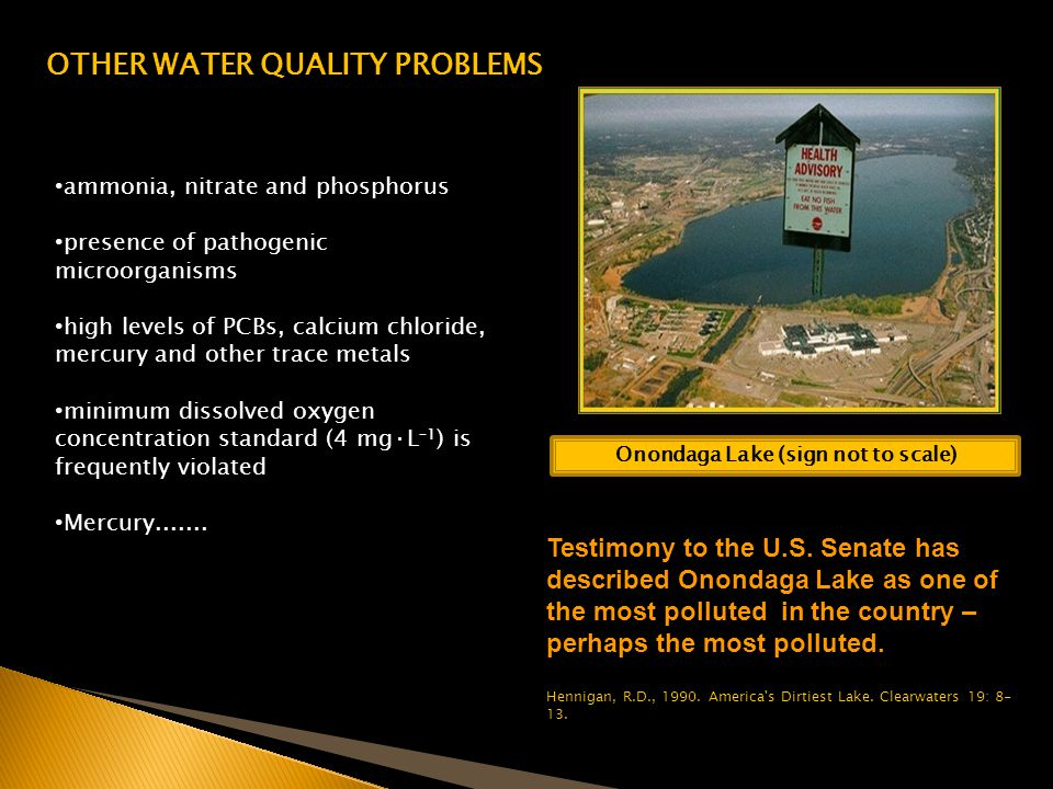 OTHER WATER QUALITY PROBLEMS Onondaga Lake (sign not to scale)