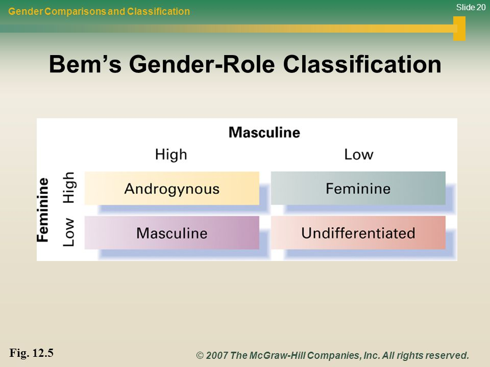 Bem's Gender-Role Classification