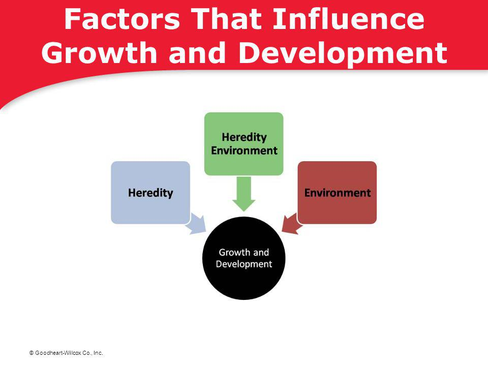 Factors That Influence Growth and Development