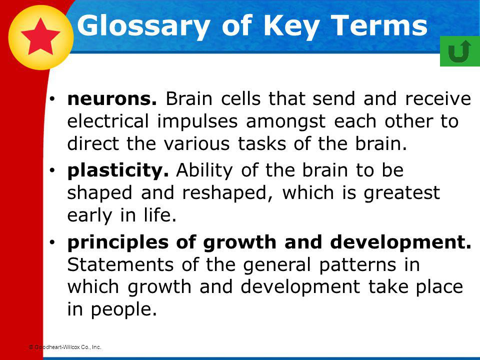 Glossary of Key Terms neurons. Brain cells that send and receive electrical impulses amongst each other to direct the various tasks of the brain.