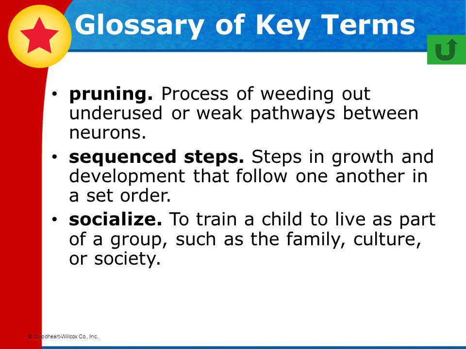 Glossary of Key Terms pruning. Process of weeding out underused or weak pathways between neurons.