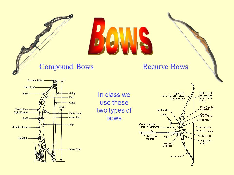 In class we use these two types of bows