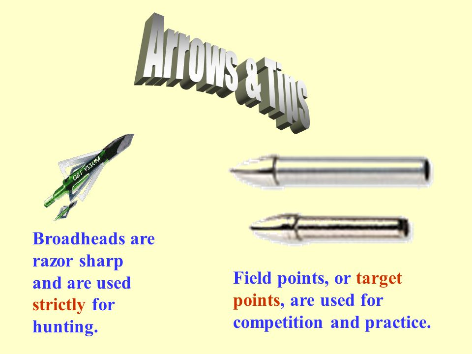 Arrows & Tips Broadheads are razor sharp and are used strictly for hunting.
