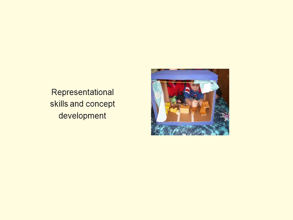 Representational skills and concept development