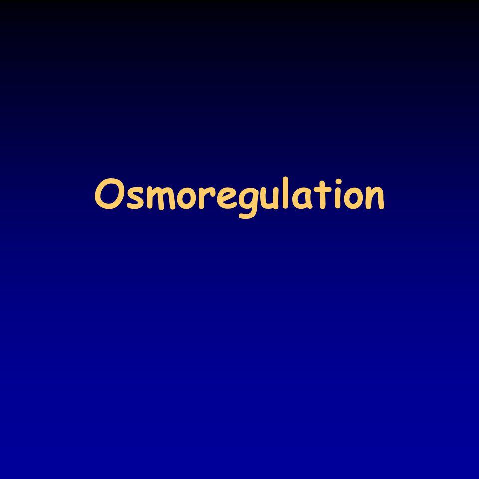 Osmoregulation