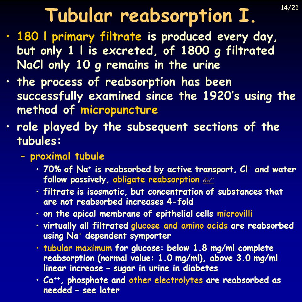 Tubular reabsorption I.