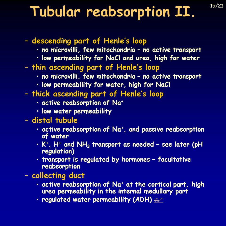 Tubular reabsorption II.