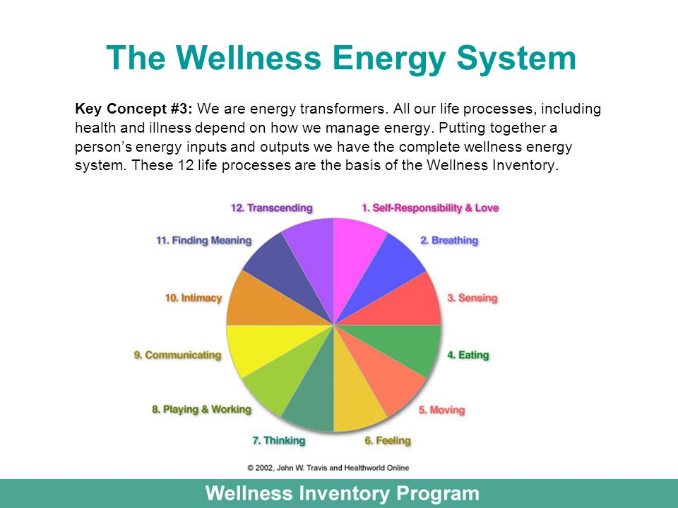 The Wellness Energy System