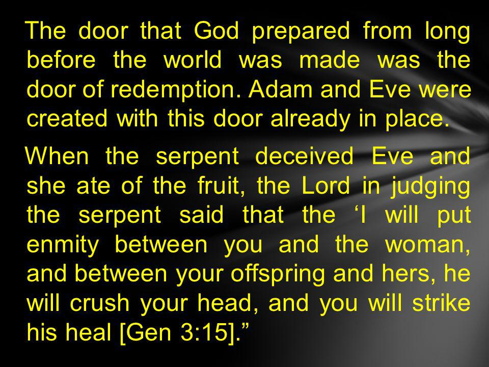 The door that God prepared from long before the world was made was the door of redemption.