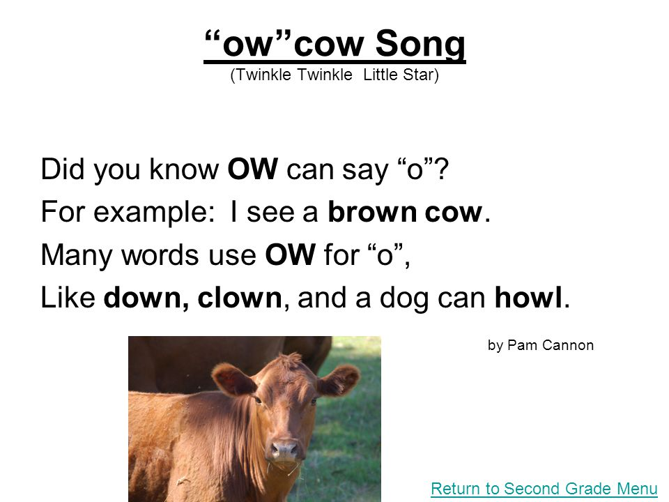 ow cow Song (Twinkle Twinkle Little Star)