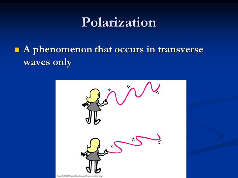 Polarization A phenomenon that occurs in transverse waves only