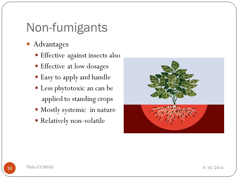 Non-fumigants Advantages Effective against insects also