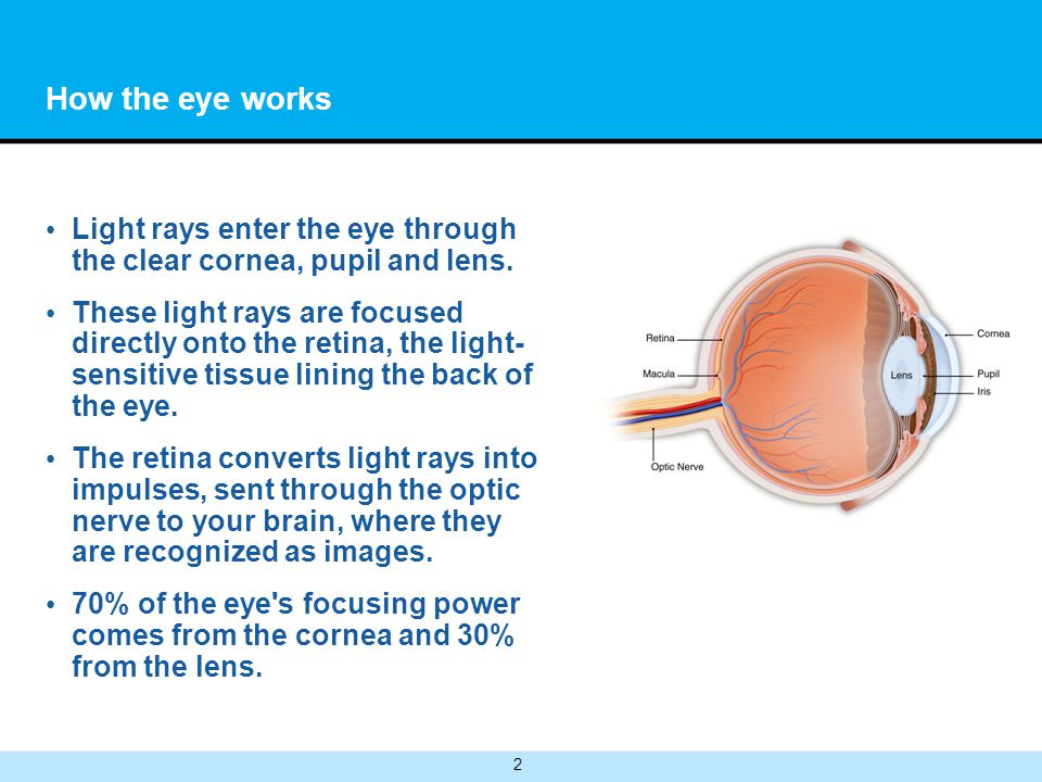 How the eye works Light rays enter the eye through the clear cornea, pupil and lens.