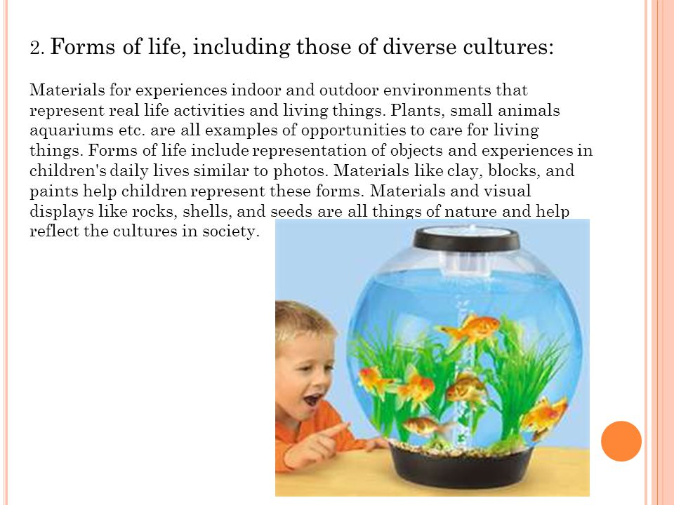 2. Forms of life, including those of diverse cultures: