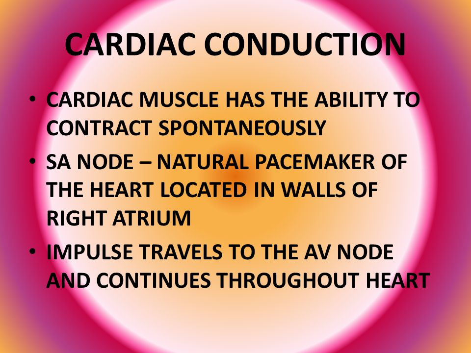 CARDIAC CONDUCTION CARDIAC MUSCLE HAS THE ABILITY TO CONTRACT SPONTANEOUSLY.