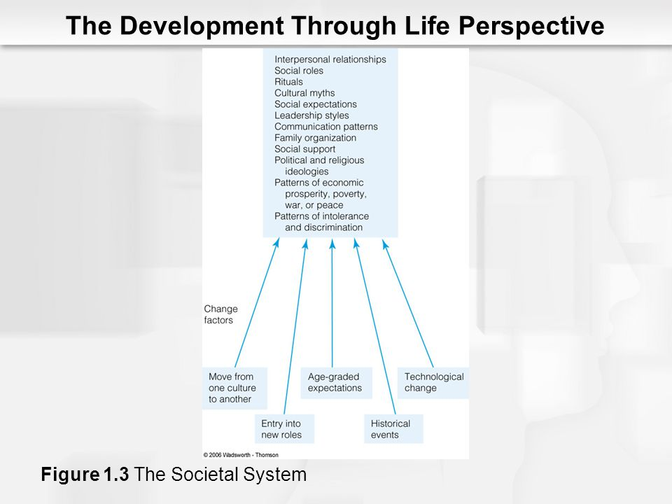 The Development Through Life Perspective