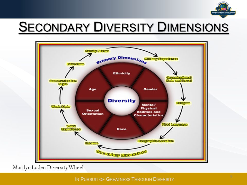 Secondary Diversity Dimensions