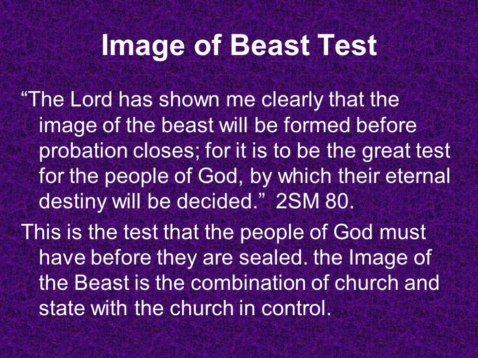 Image of Beast Test