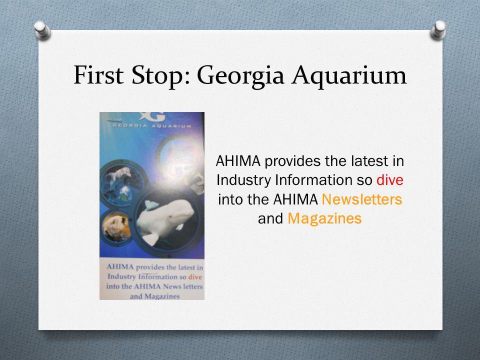 First Stop: Georgia Aquarium