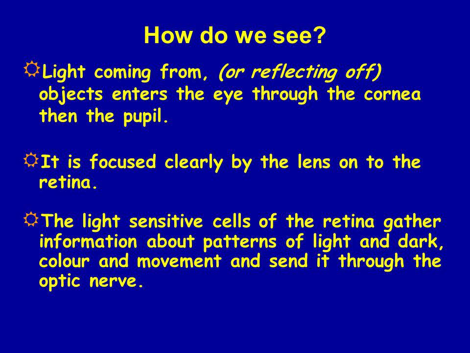 How do we see Light coming from, (or reflecting off) objects enters the eye through the cornea then the pupil.