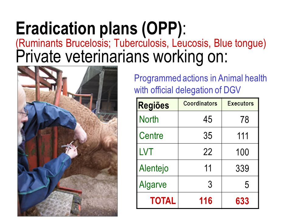 Eradication plans (OPP): (Ruminants Brucelosis; Tuberculosis, Leucosis, Blue tongue) Private veterinarians working on: