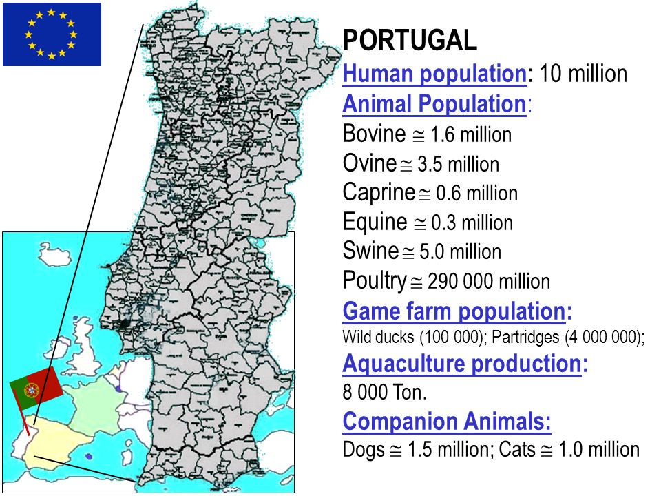 PORTUGAL Human population: 10 million Animal Population: